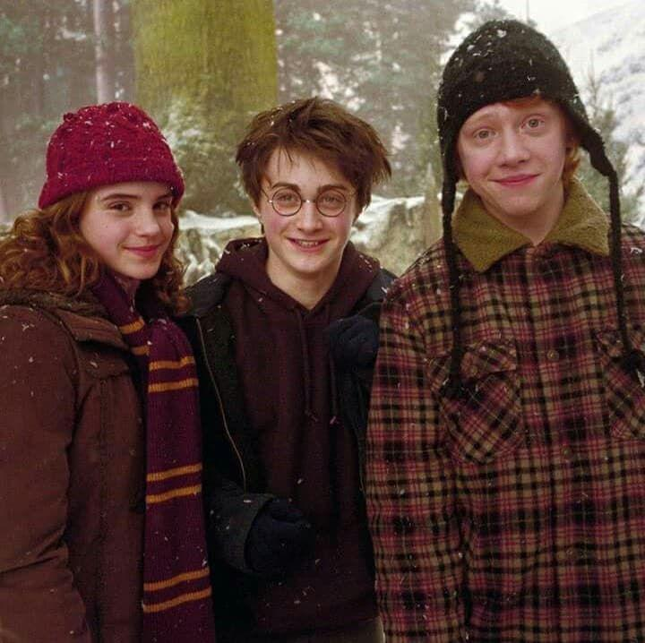 Hogwarts School of Witchcraft and Wizardry. harry potter, hermione granger, and emma watson image