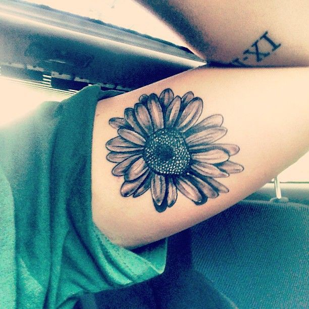 Nice collection of daisy tattoo arm, Sleeve tattoo