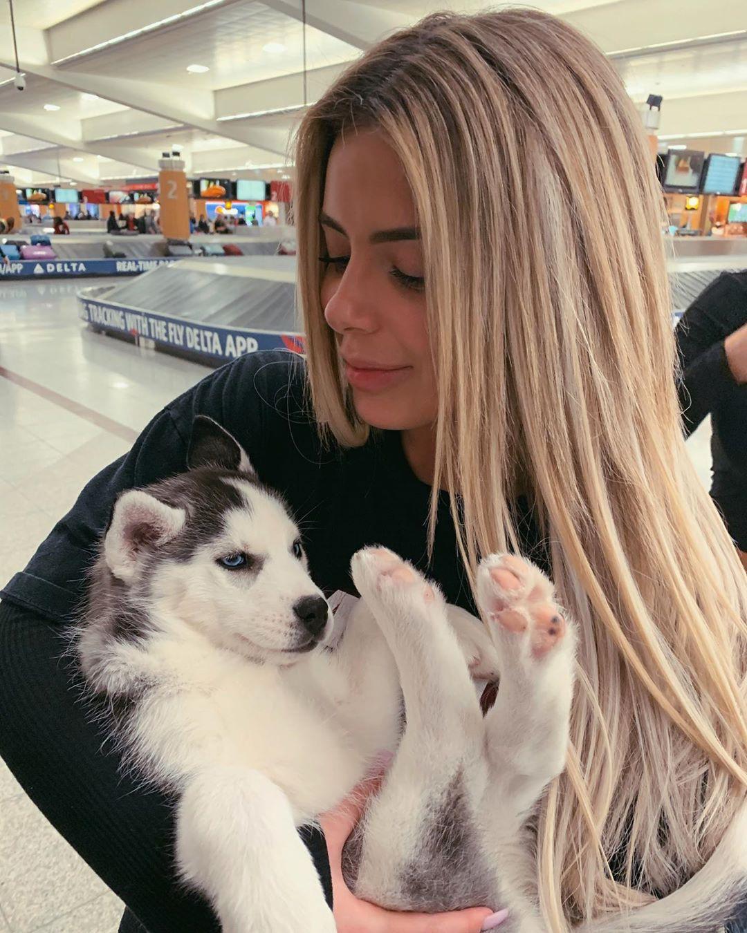 Brielle Biermann Instagram Pictures, Miniature Siberian Husky, Canadian Eskimo dog