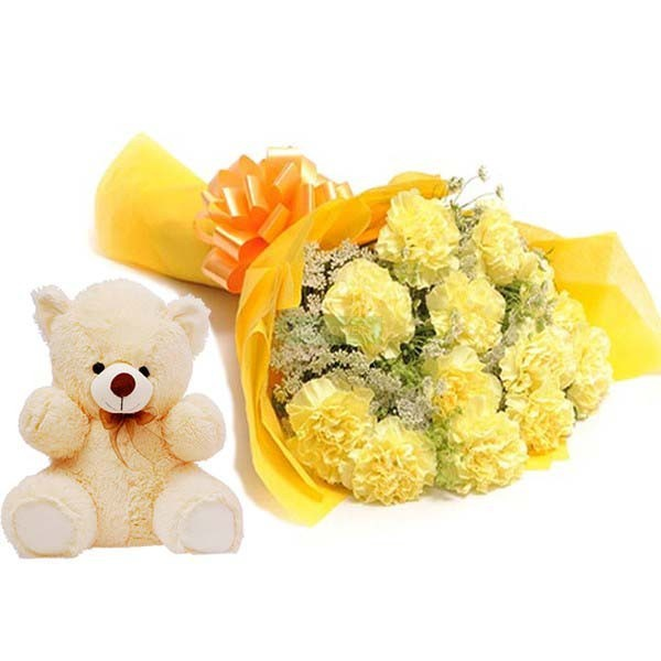 Beauty of Carnations with Teddy